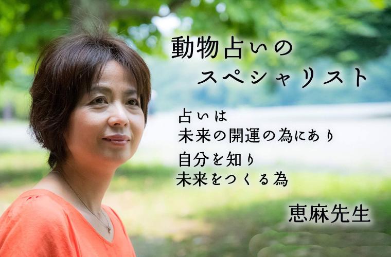 動物占いスペシャリスト恵麻先生